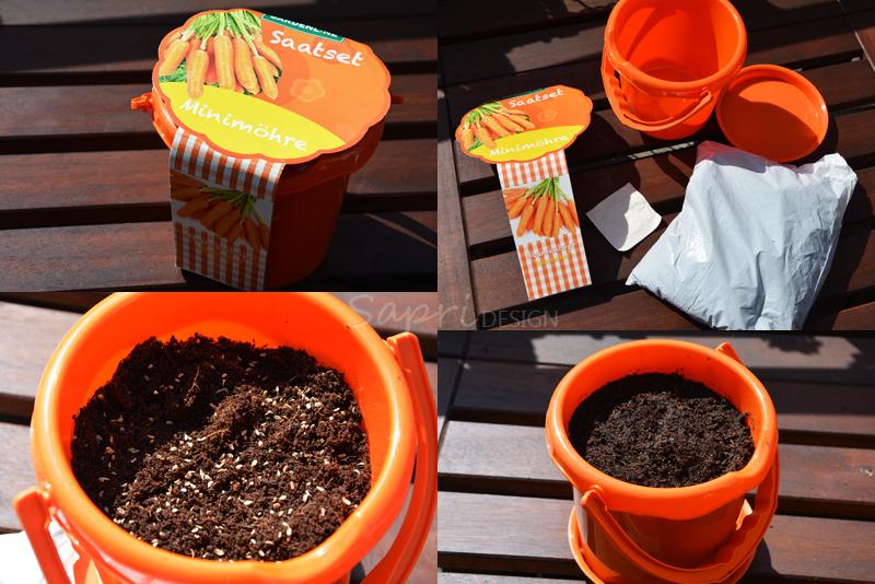 sapri-design-tomaten-selber-züchten-saat-zucht-gurken-erdbeeren-möhren-pflanzset-balkon-garten-selbstversorger-9