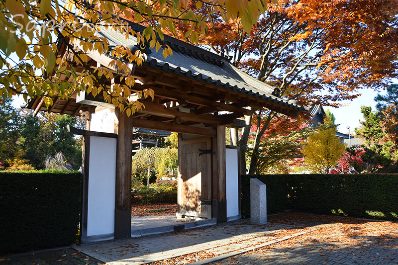sapri-design-ausflug-ziel-duesseldorf-nrw-japan-eko-haus-japanischer-garten-familienausflug-3