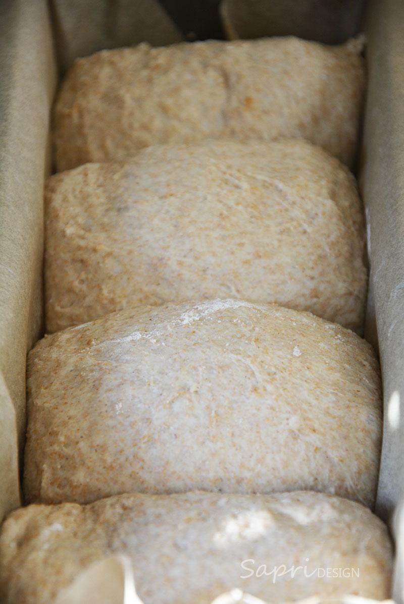 sapri-design-blog-blogger-wochenend-rezept-kochen-backen-brot-toast-toastbrot-dinkel-vollkorn-4